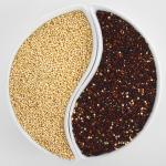 La dieta macrobiotica: principi, filosofia e caratteristiche
