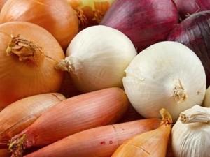 Reflusso gastroesofageo aglio e cipolle alimenti da evitare dietaokit