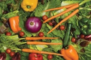 betacarotene dietaok dieta per mantenere abbronzatura duratura